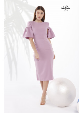Ruffle Short Sleeves Bodycon  Dress With A Special Design For Special Look