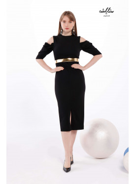 Round Neck fitted  Bodycon  Black Dress
