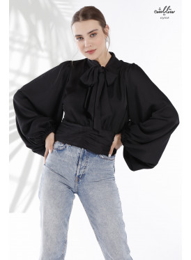 Tie back puff sleeve blouse, decorated with back zip, and tied at waist